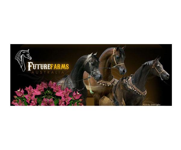 Future Farms Arabians